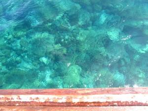 Ko Lipe Diving - Koh Taru