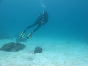 Ko Lipe Diving - scuba diving around Koh Lipe, Thailand