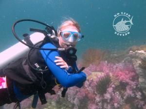 Stonehenge Ko Lipe Diving