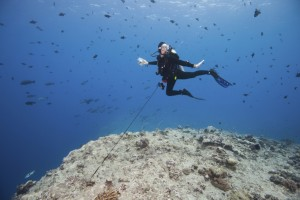 Scuba diver using a reef hook at the Blue Corner dive site in Palau.